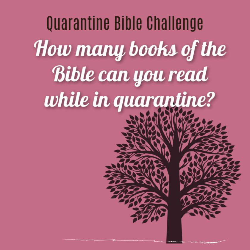 Quarantine Bible Book Reading Challenge